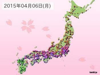 japan_sakura.jpg